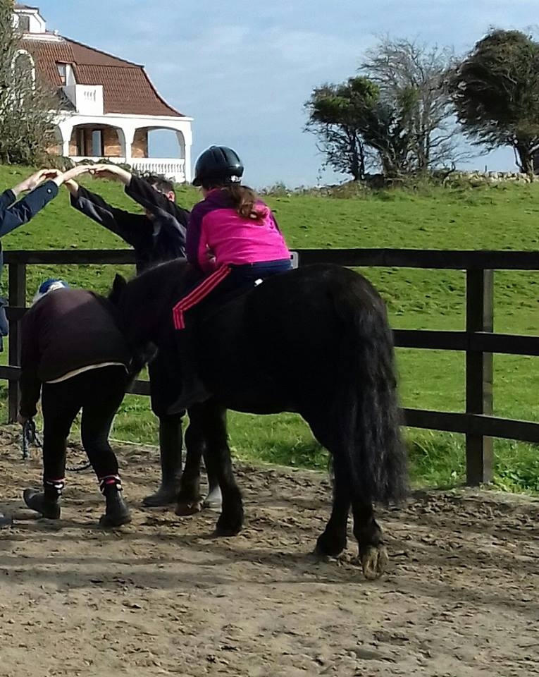 Galway, Therapeutic Horse-riding, equine-assisted therapy, horses connect