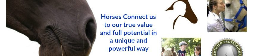 Horses Connect