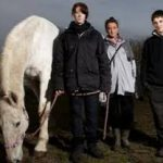 equine-assisted-learning-teenagers